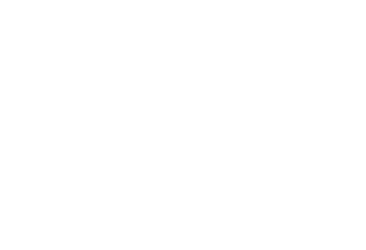 Louis Foods, Inc.