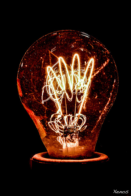 Bulb-Fiction-by-Uwe-Niederberger.jpg