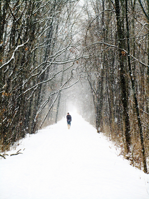 Winter-Trail-by-Rachel-Kramer.jpg