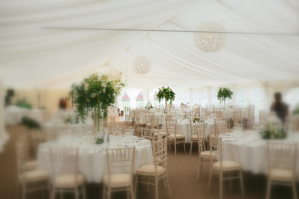 Myles  Alana Wedding-10477.jpg