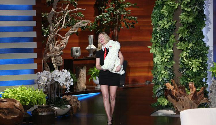 Ellen Talkshow - Jan 2017