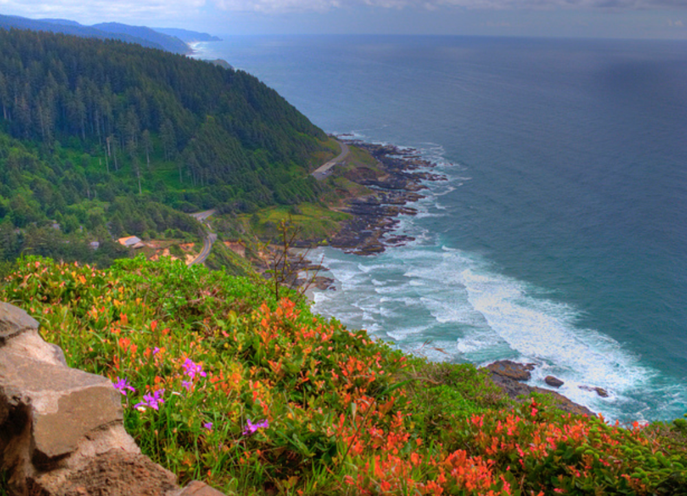 Cape Perpetua near Overleaf Lodge