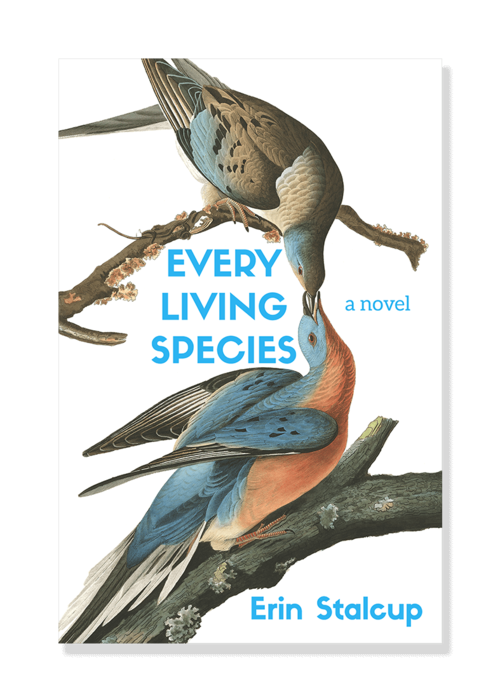 Image result for Erin Stalcup, Every Living Species,