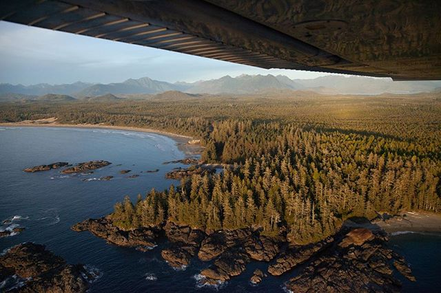 Being able to fly to places like Tofino while time-building for my license directly shaped my desire to share how beautiful this island is with people.  Photo by @nicktemos  #yourtofino  #explorevancouverisland  #vancouverisland  #pacificnorthwestco