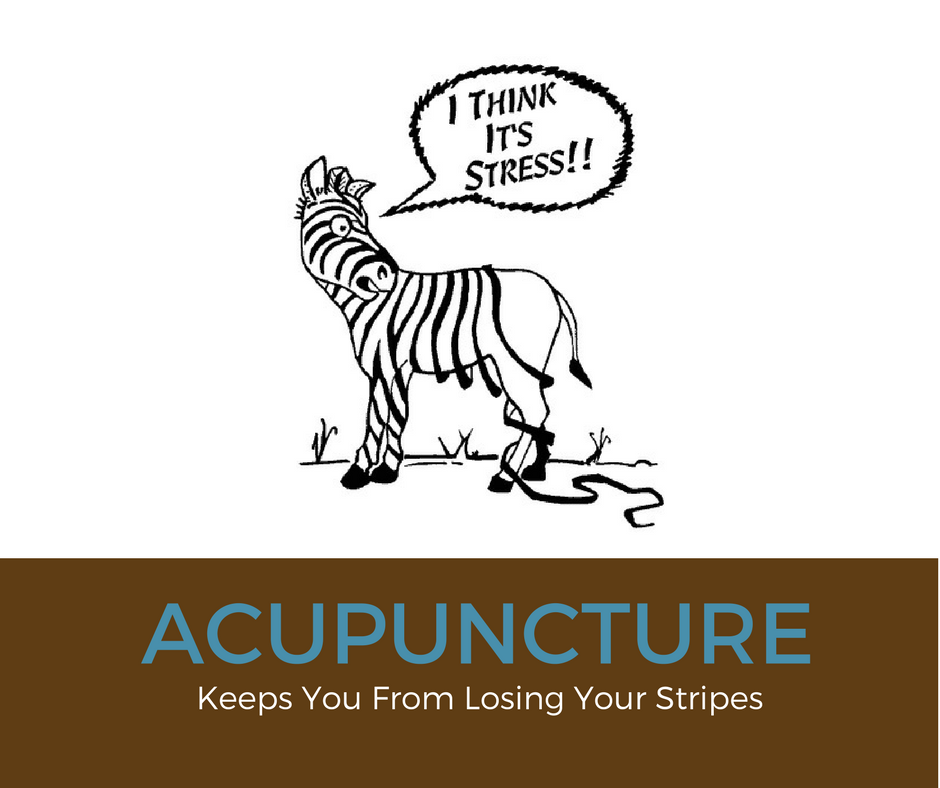 Stress_Acupuncture Stripes.png