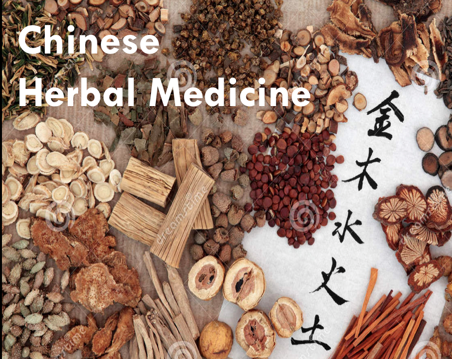 We were humbled by the opportunity to present & discuss Chinese Herbal Medicine with a senior level UCF Medicinal Botany class today.  Great Host, Great Crowd, Great Questions, Great Times!