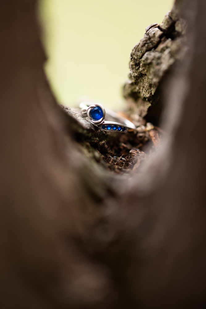 engagement-Photographer-lisa-villella-photography-blog-47.jpg