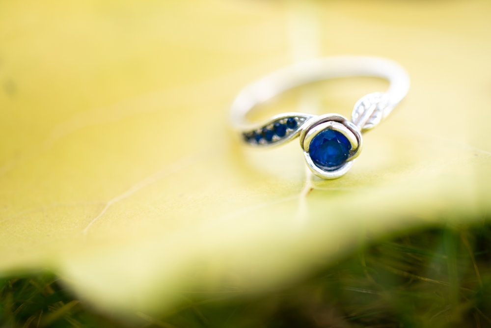 engagement-Photographer-lisa-villella-photography-blog-48.jpg