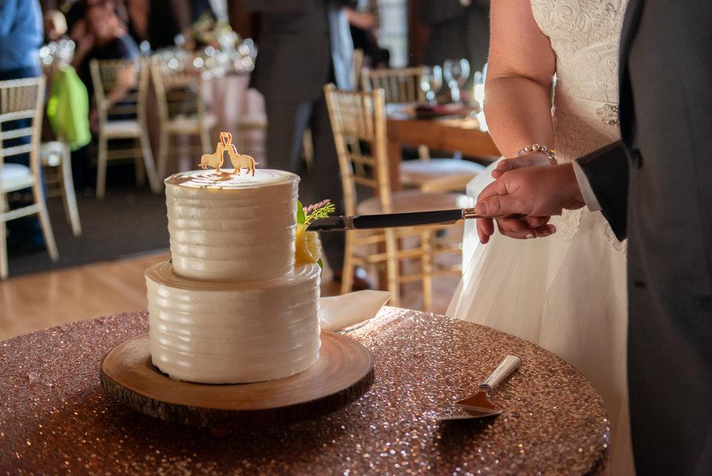 Emma-John-Wedding-Blog-Lisa-Villella-Photography-67.jpg