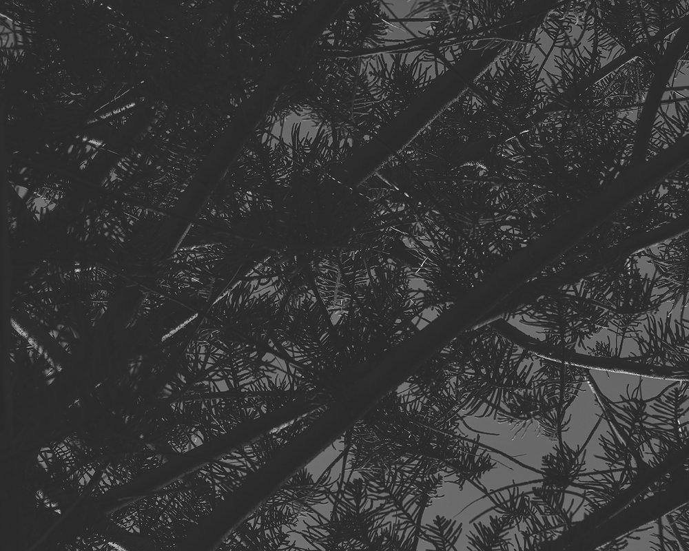 horizonnohorizon_0020.jpg