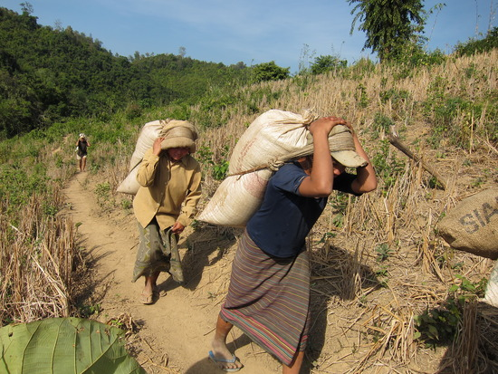 1.1261103306.locals-carrying-50kgs-of-rice.jpg