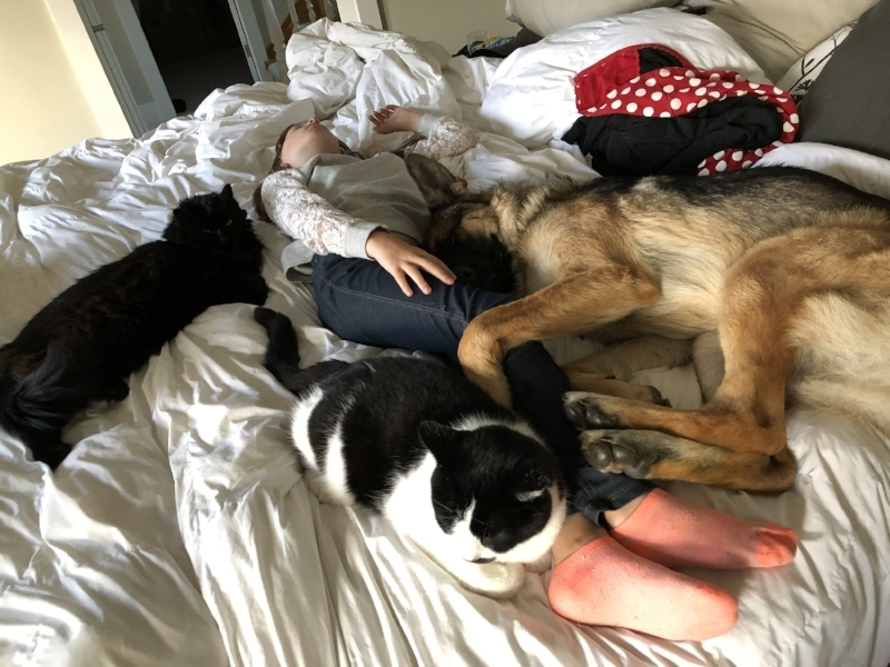 Please don't judge me on the messy bed, the cover was being washed. There are 3 out of our 4 animals in this cuddle puddle.