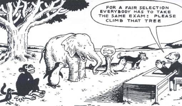 Image result for tall have same assessment go climb tree cartoon