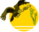 Environmenatalism and Regionalism