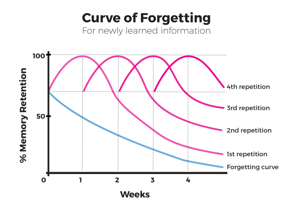 The Curve of Forgetting - The blue line on the graph dips into a curve to show that our memory of new facts we have learned declines over time, unless we revise that information regularly. There are 4 pink curved lines to represent how our memory retention will be higher if we revise the information we learn.