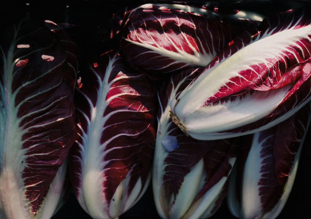 radicchio - the unsung hero of the mediterranean diet