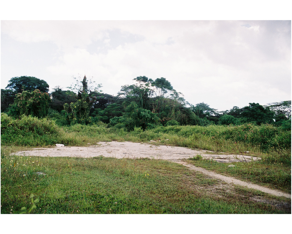 Site 5.jpg