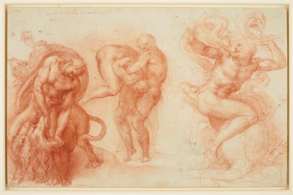 Michelangelo_irisletter.png