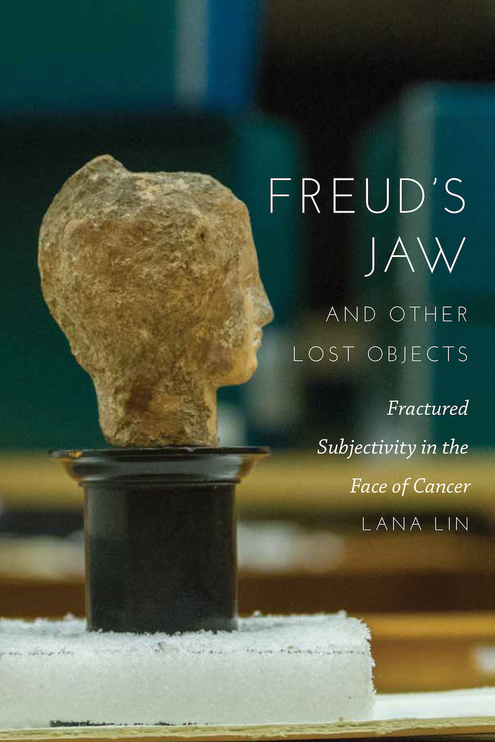 Freud's Jaw cover copy.jpg