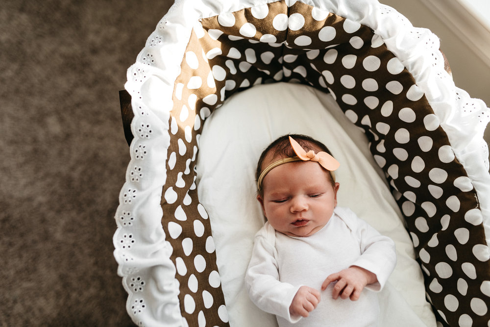 Newborn-baby-girl-in-bassinet-Columbus-Ohio-Photographer-Erika-Venci-Photography