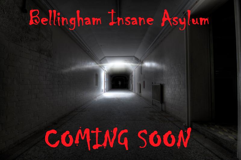 Asylum-3.png