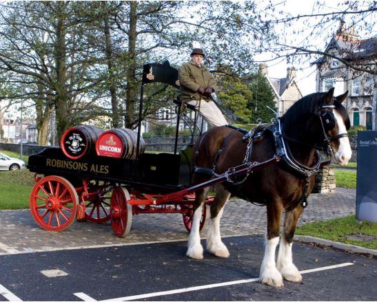 Yük çekme özellikleriyle ünlü olan Shire atları