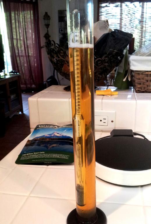 Alkol oranını ölçen bir hidrometre
