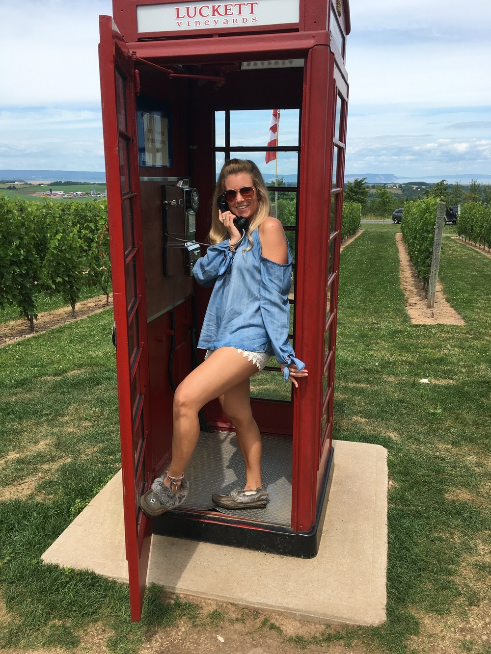 Red Telephone Booth amongst a Vineyard!