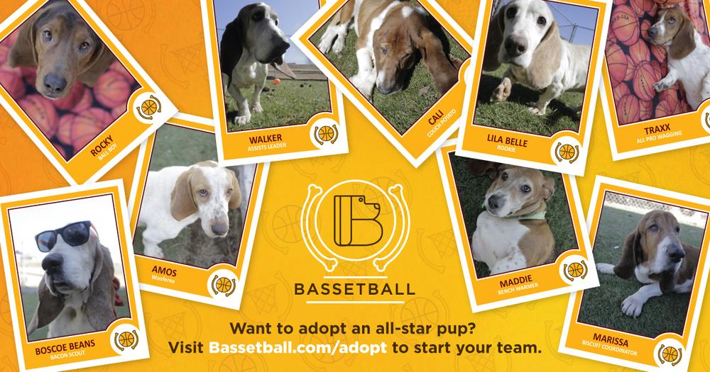 Bassetball_metaimg_adopt.jpg