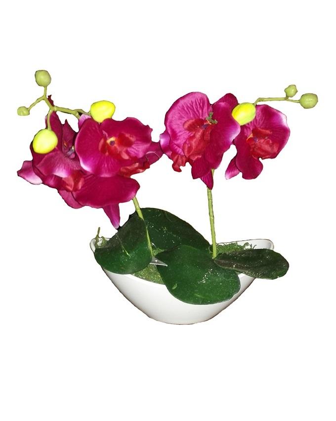 jan purple wild orchid in plastic boat - 30cm   n4,000