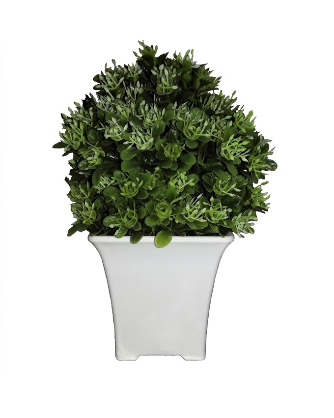NEW    DEVON BABY GREEN PLANT - 19CM   N5,500