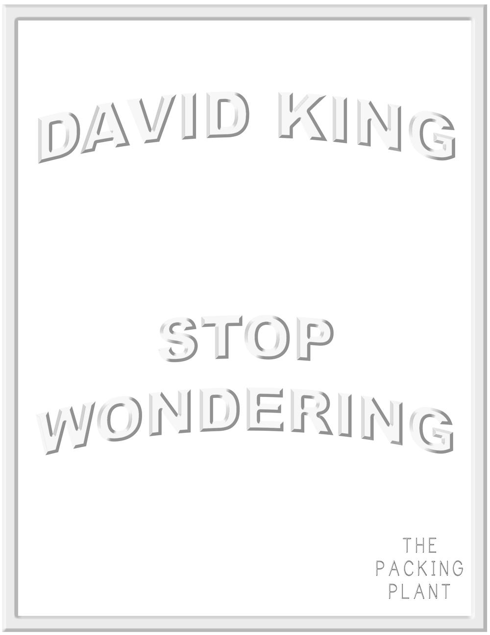 STOP WONDERING   David King  December 2015