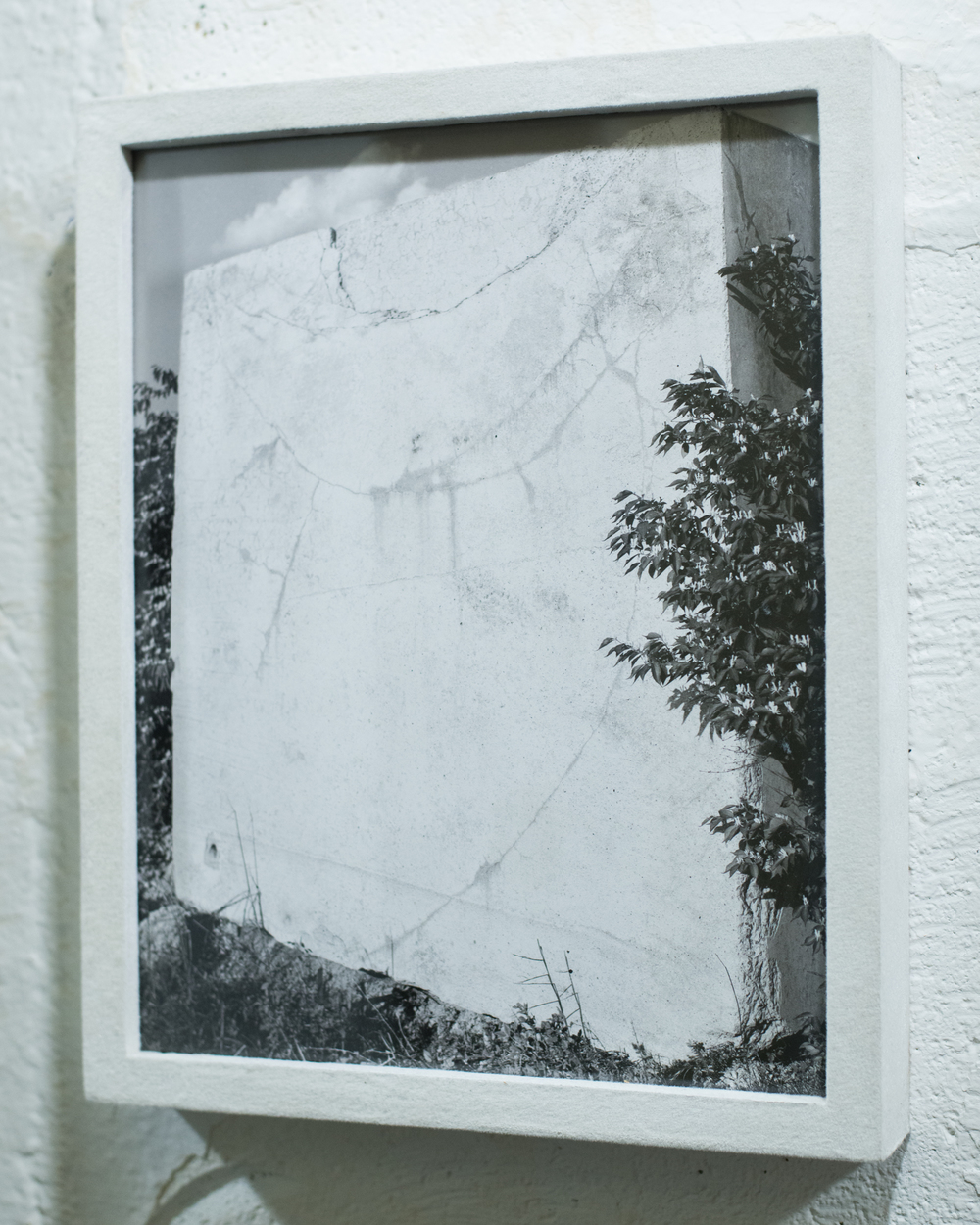 Untitled    pigment print in wood frame with nylon flocking    2015