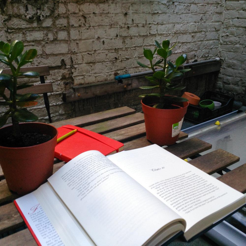 expat, belgium, expat life, Gent, reading, Curtis Sittenfeld, books