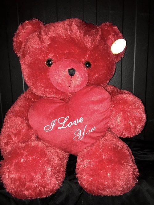 Red teddy bear i love you mex city florist party center red teddy bear i love you altavistaventures Choice Image