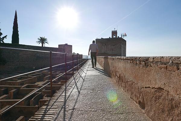 Alhambra_245.jpg