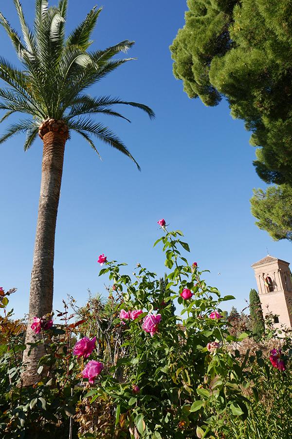 Alhambra_251.jpg