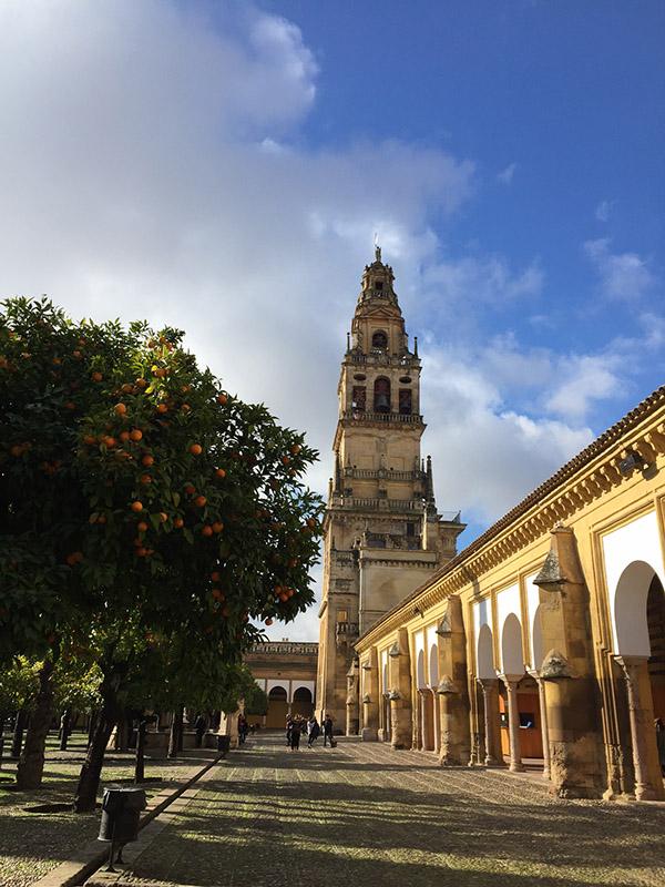 mesquita5.jpg