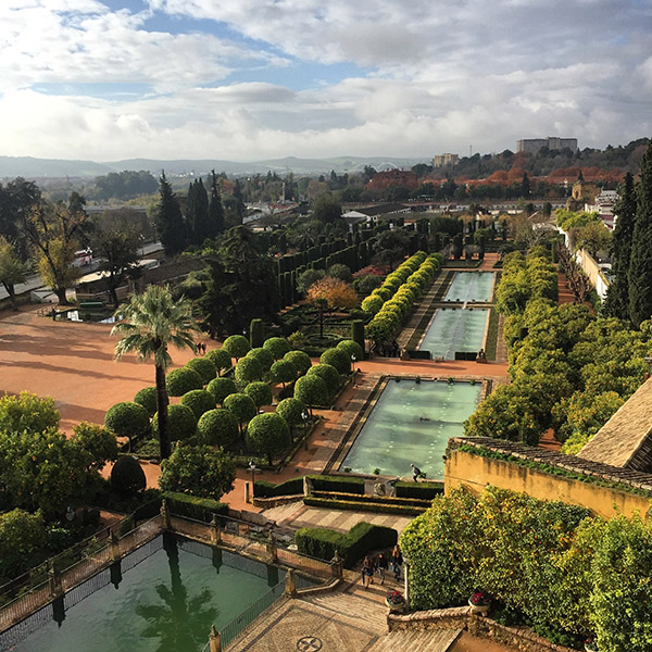 The gardens from the top of the Alcazar