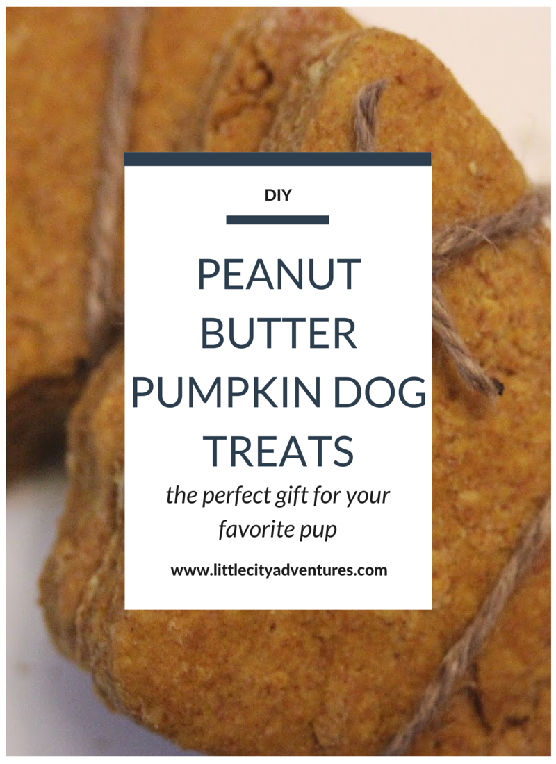 These easy to make peanut butter pumpkin dog treats are a delicious treat for your loyal pup