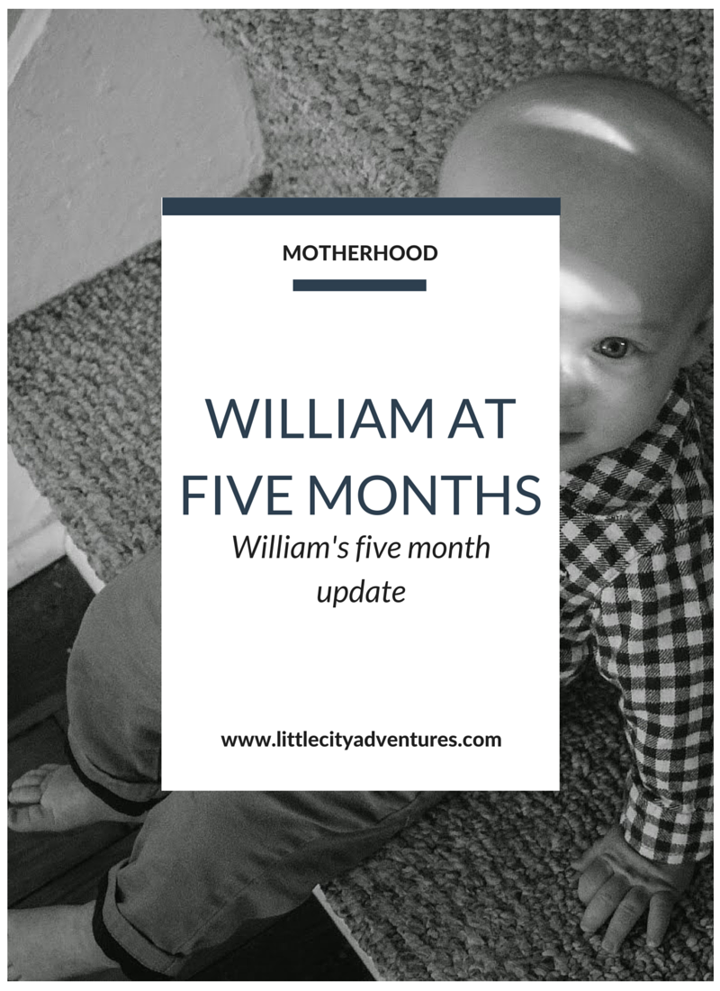 Aren't monthly baby updates just the cutest?!