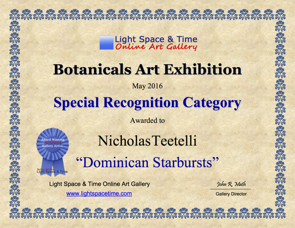 2016-05 LS&T Art Exhibition- Botanicals - Special Merit - Dominican Starbursts.png