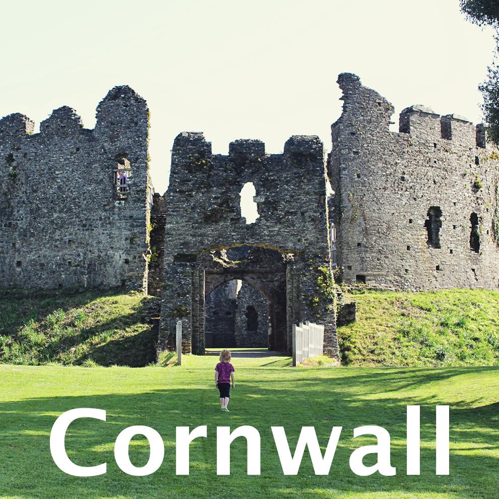 restomel castle lostwithel noah emandthewilds.jpg
