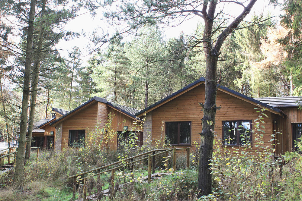 center-parcs-lodges.jpg
