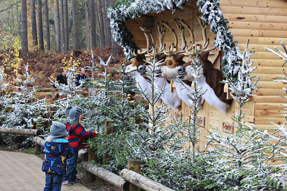 center-parcs-winter-wonderland.jpg