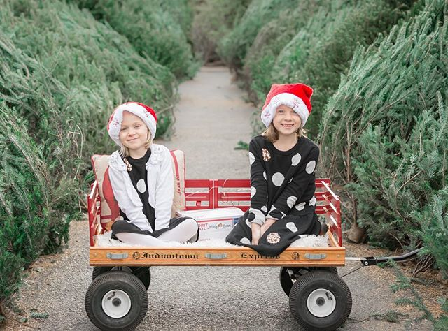 Could these two girls be any stinking cuter?!?! Little did they know their amazing mama had a special surprise for them in the mailer (more details on the way!) ❤️ Sending everyone a happy #friyay and cheers to making it to the weekend!!! • • • Styling: @thejesswalkermomspot  Location: @centralpafb tree stop Wagon: @ashleyyohn • • • #happyholidays #christmasspirit #merrychristmas #holidayseason #holiday #holidaypics #itsthemostwonderfultimeoftheyear #minisession #sisters #family #familyphotos #familyphotography #christmaspics #weekendvibes #christmasvibes #christmastree #christmaslove #joy #holidayjoy