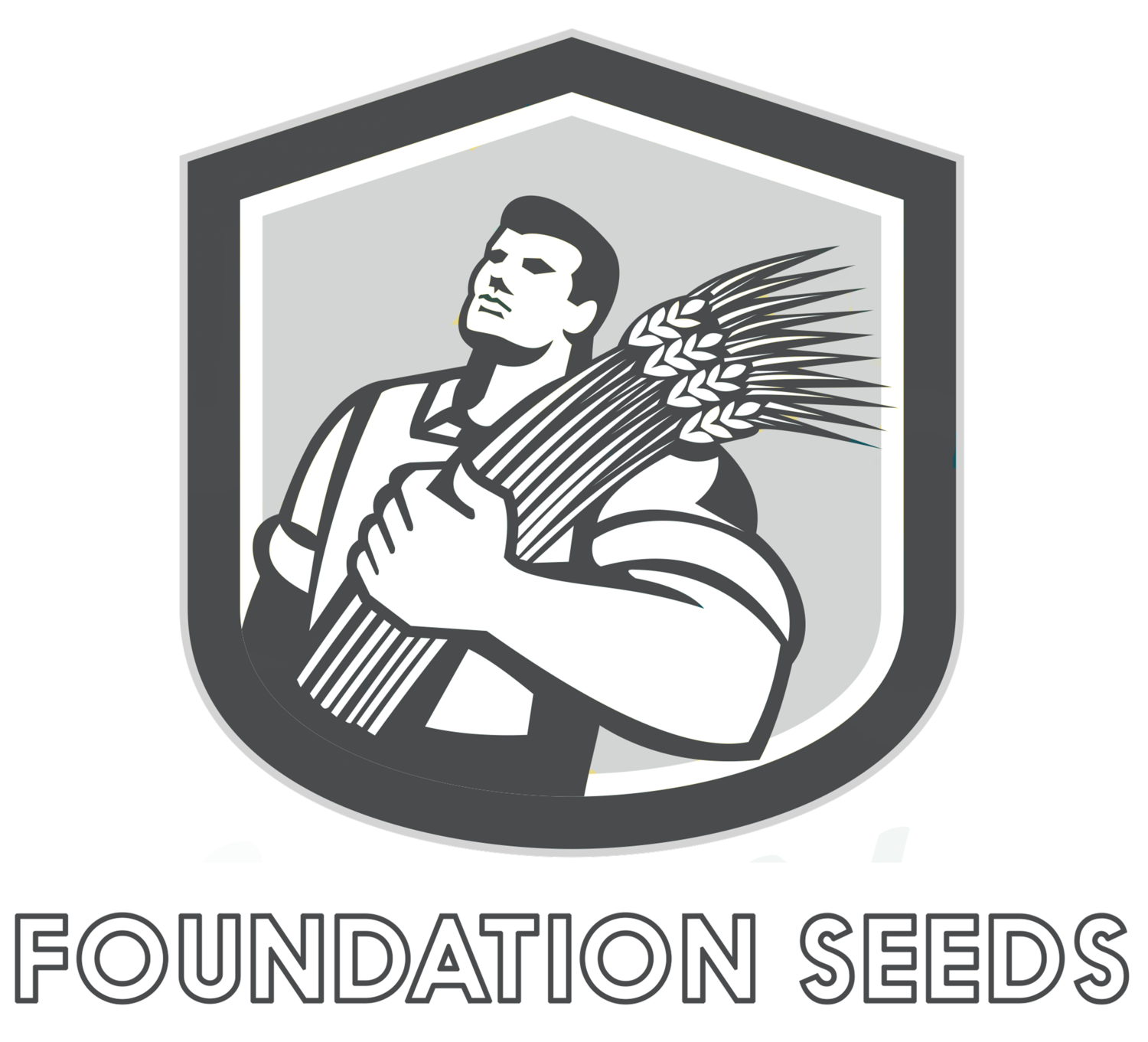 Foundation Seeds