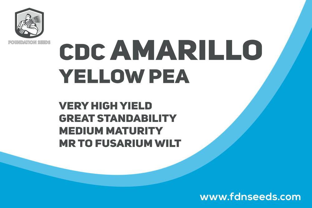 CDC Amarillo