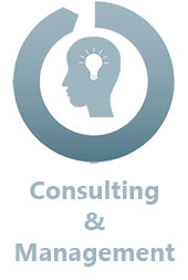 PFS Consulting & Management