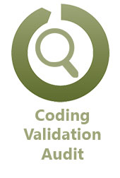 Coding Validation Audit